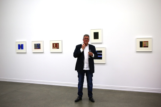 Mike McCormack introduces the Gordon Walters show at Stark White
